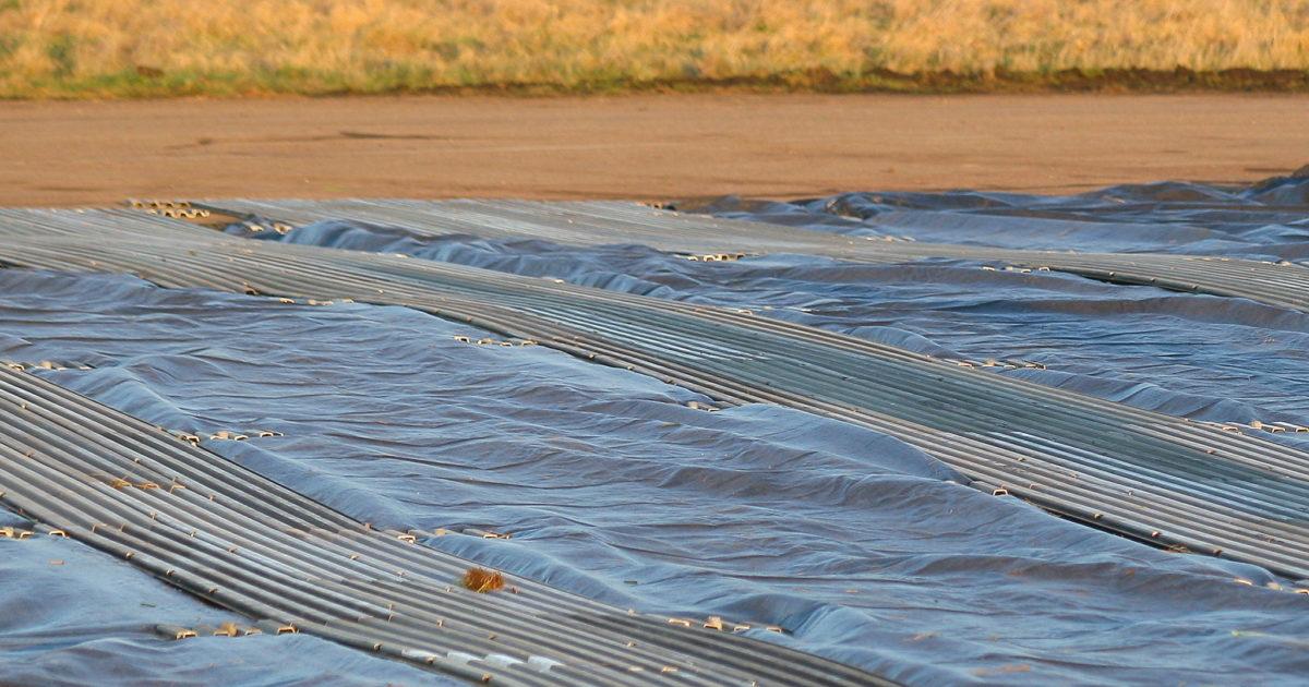 Air Track Mat 3 Meter